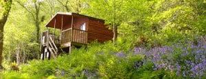 Log cabin at Old Oak Barn