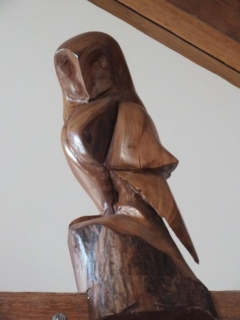 Elm Owl