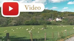 360 Virtual Tour of Old Oak Barn