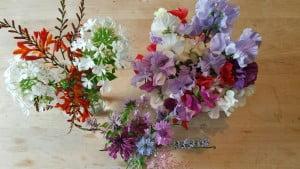 Old Oak Barn flowers