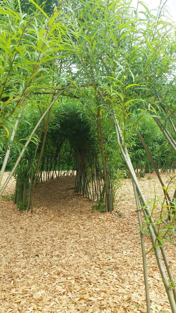 NAtional Botanic Gardens Wales