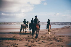 Wales Escapes - ride a horse on the beach