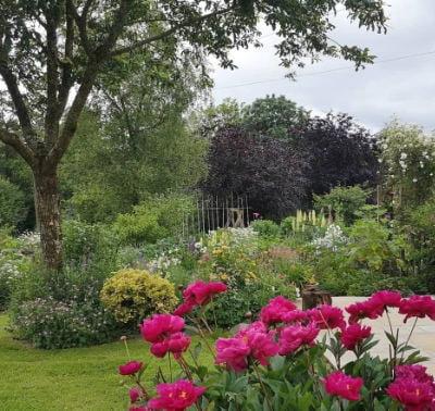 Old Oak Barn Flowers Garden